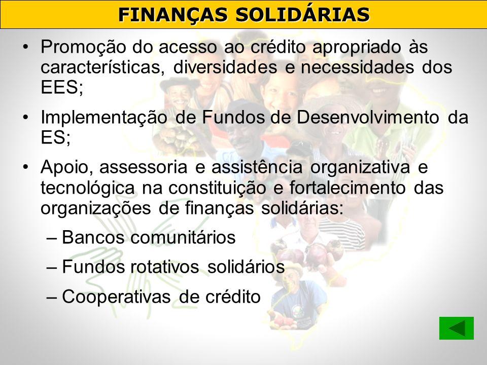 FINANÇAS SOLIDÁRIAS Promoção do acesso ao crédito apropriado às características, diversidades e necessidades dos EES;