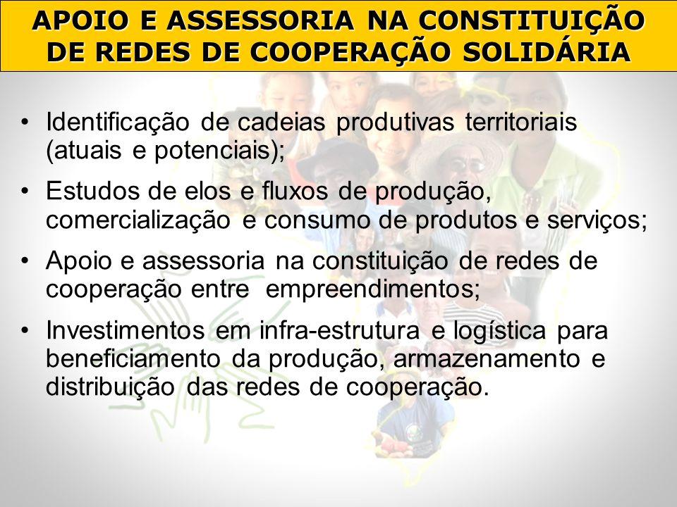 APOIO E ASSESSORIA NA CONSTITUIÇÃO DE REDES DE COOPERAÇÃO SOLIDÁRIA
