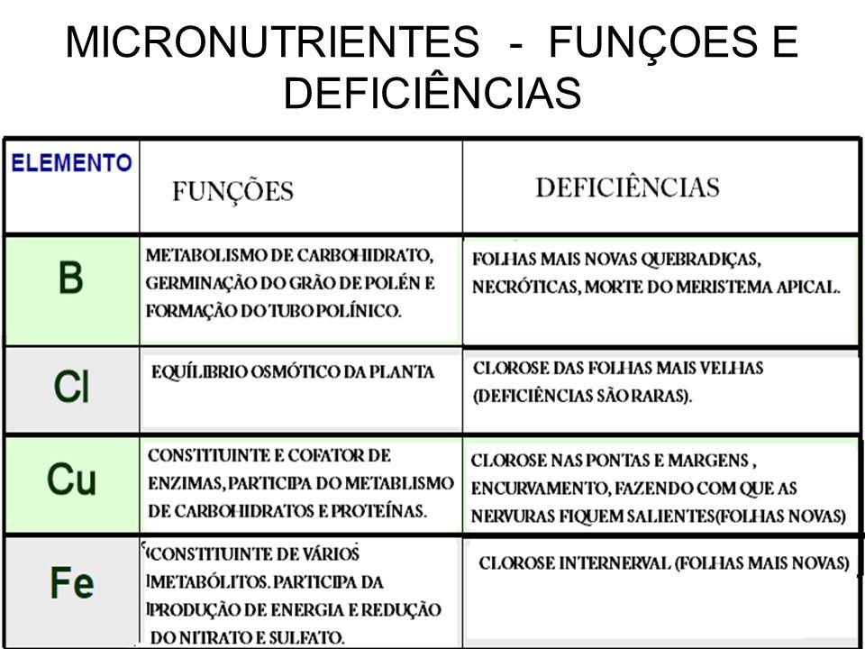 MICRONUTRIENTES - FUNÇOES E DEFICIÊNCIAS