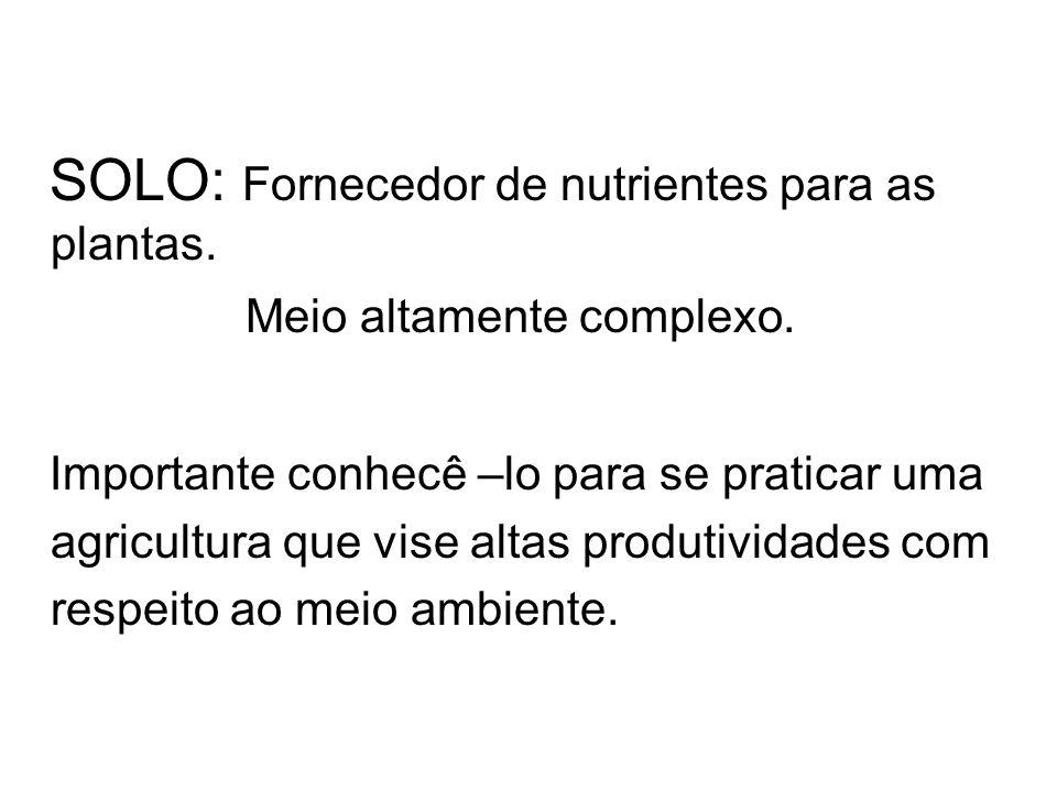 SOLO: Fornecedor de nutrientes para as plantas.