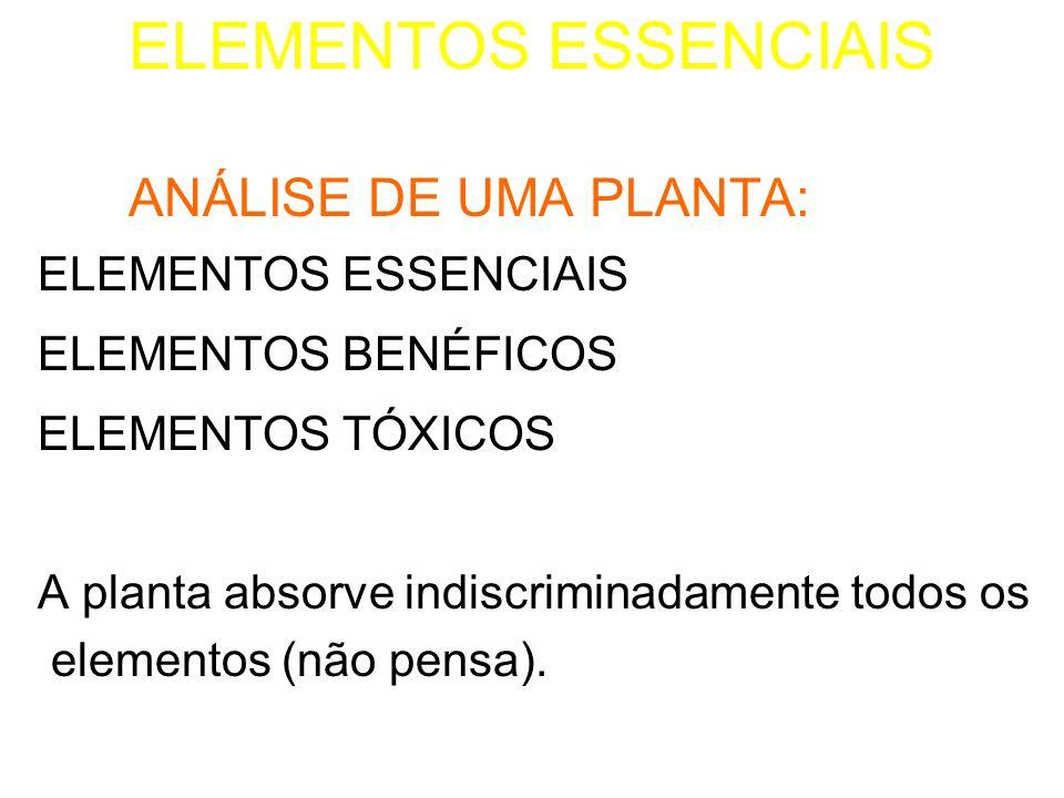 ELEMENTOS ESSENCIAIS ANÁLISE DE UMA PLANTA: ELEMENTOS BENÉFICOS