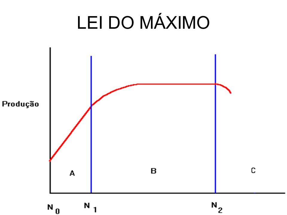LEI DO MÁXIMO