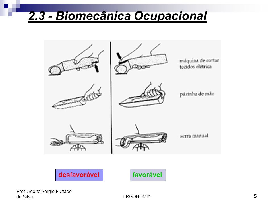 2.3 - Biomecânica Ocupacional