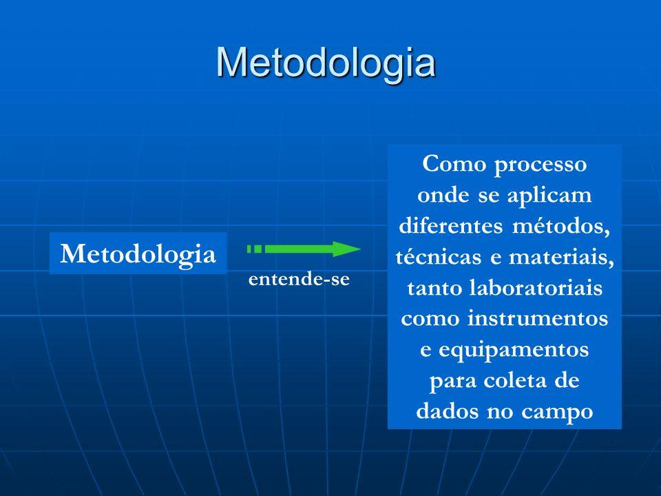 Metodologia Metodologia
