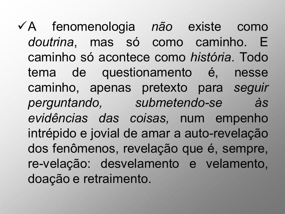 A fenomenologia não existe como doutrina, mas só como caminho