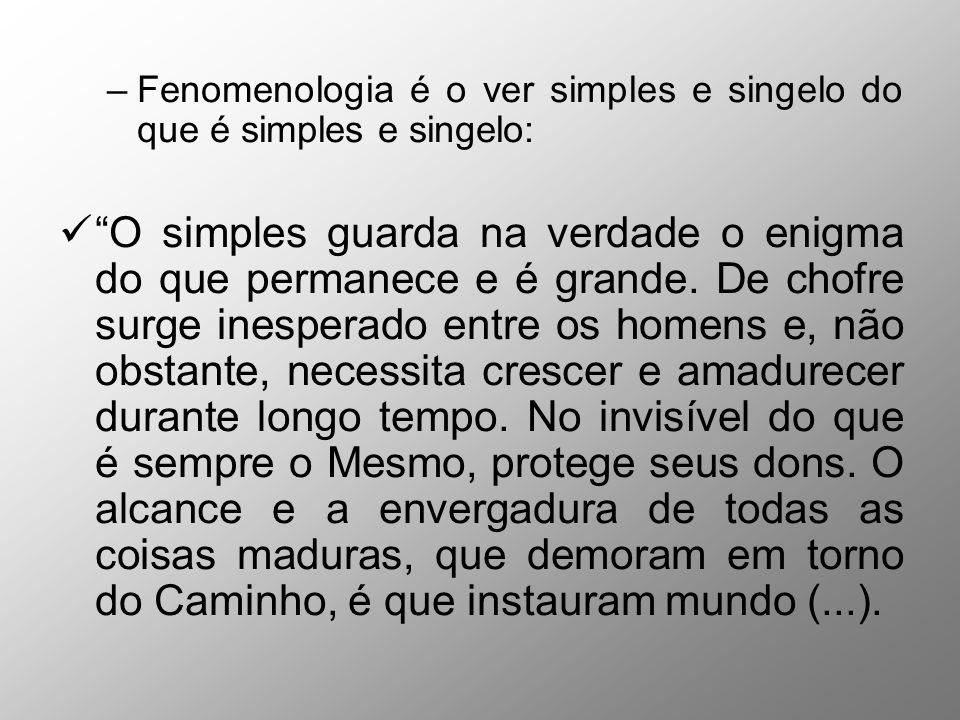 Fenomenologia é o ver simples e singelo do que é simples e singelo: