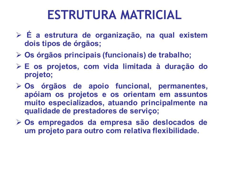 ESTRUTURA MATRICIAL É a estrutura de organização, na qual existem dois tipos de órgãos; Os órgãos principais (funcionais) de trabalho;