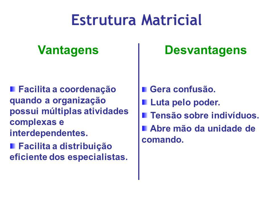 Estrutura Matricial Vantagens Desvantagens