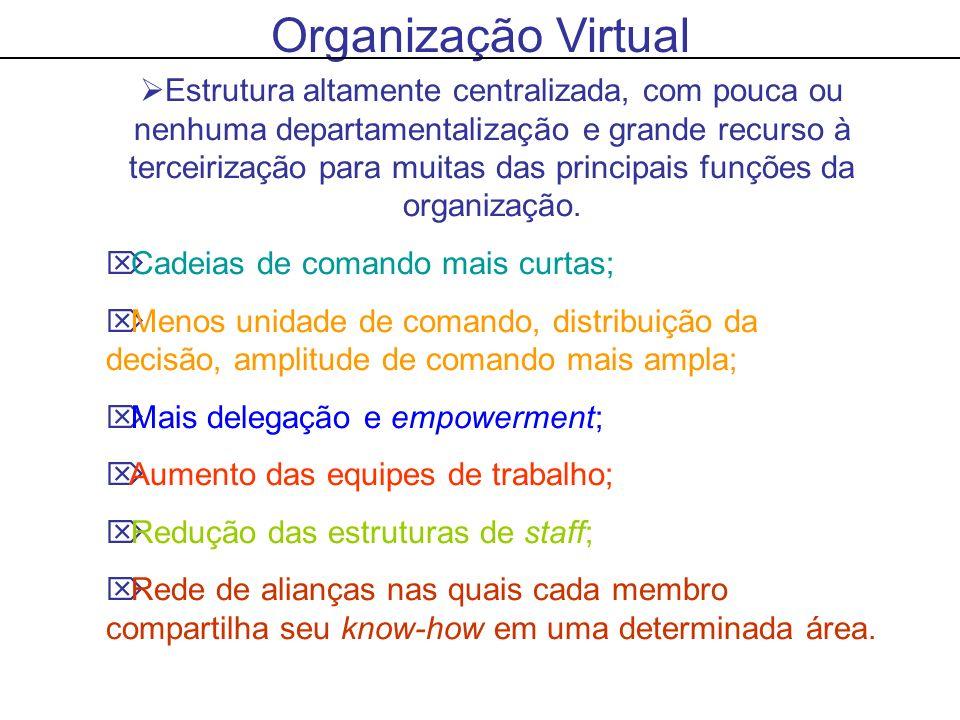 Organização Virtual