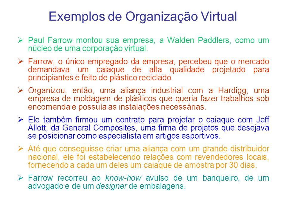 Exemplos de Organização Virtual