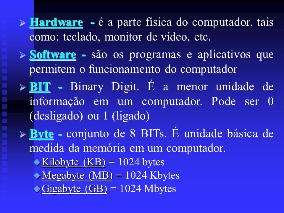 Hardware - é a parte física do computador, tais como: teclado, monitor de vídeo, etc.
