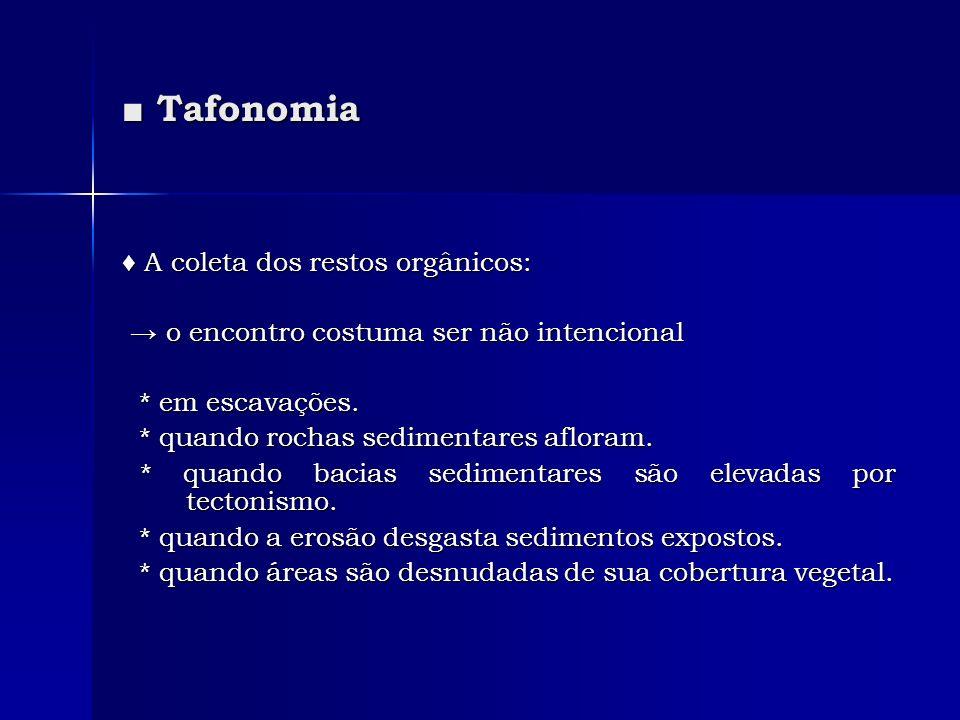 ■ Tafonomia ♦ A coleta dos restos orgânicos: