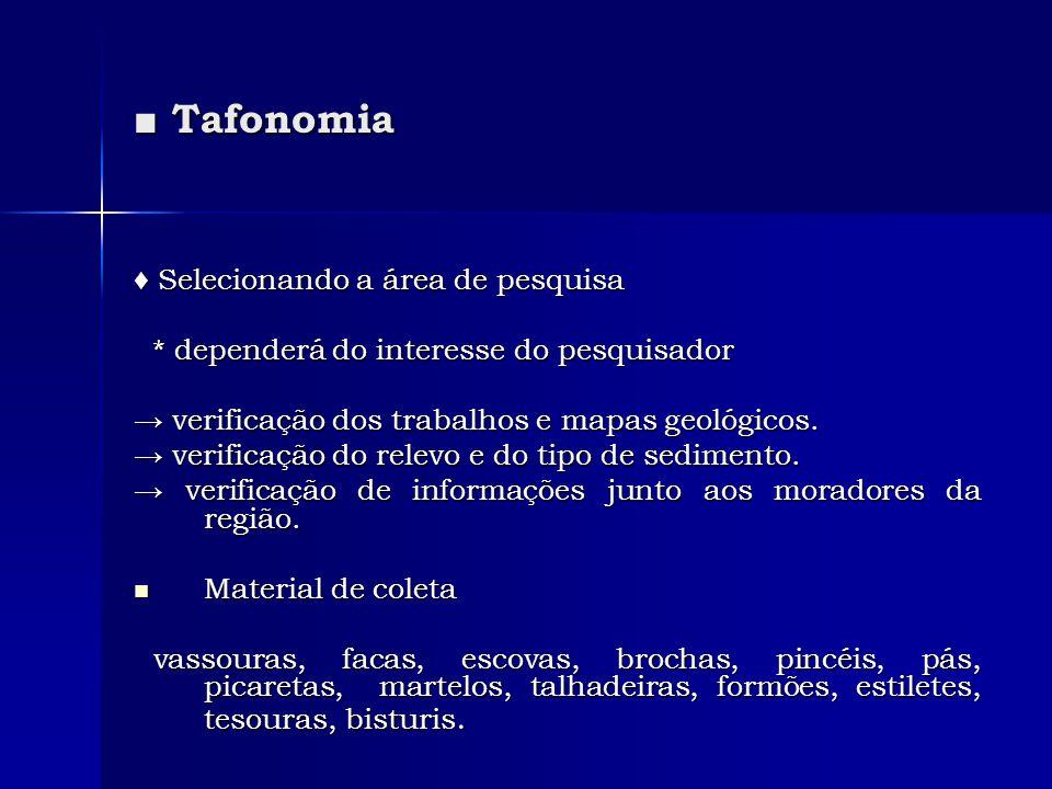 ■ Tafonomia ♦ Selecionando a área de pesquisa