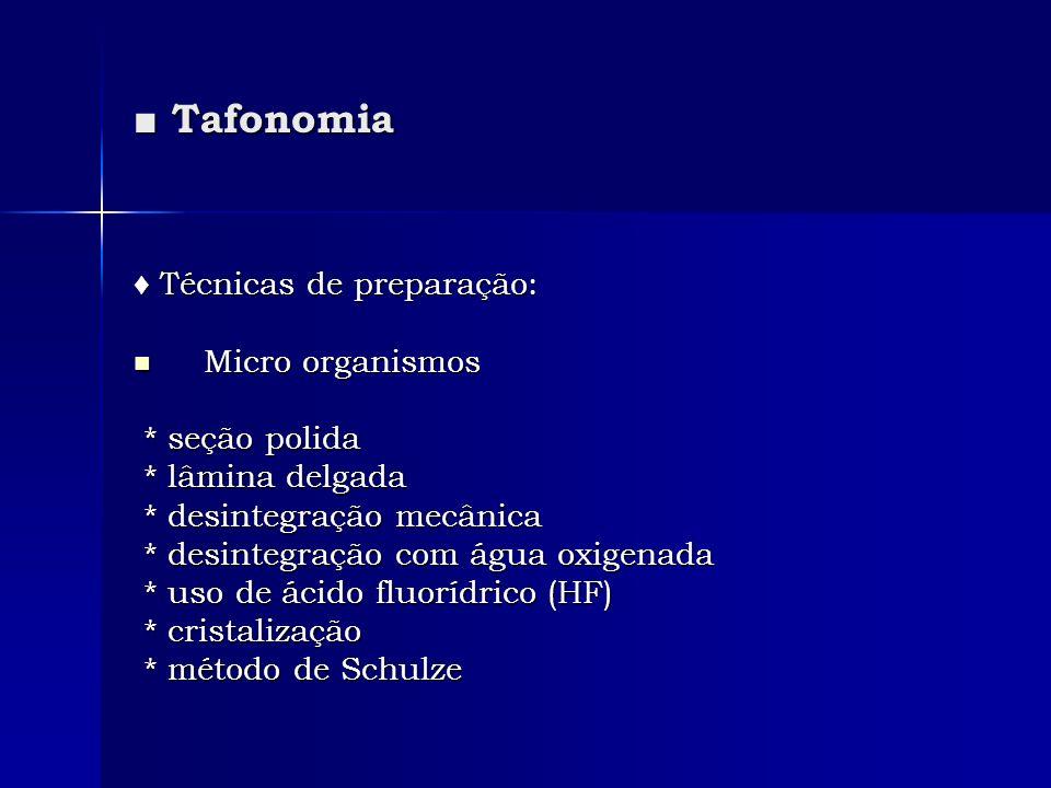 ■ Tafonomia ♦ Técnicas de preparação: Micro organismos * seção polida