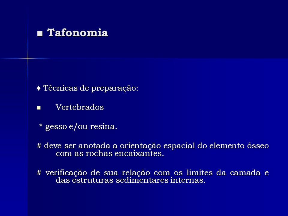 ■ Tafonomia ♦ Técnicas de preparação: Vertebrados * gesso e/ou resina.