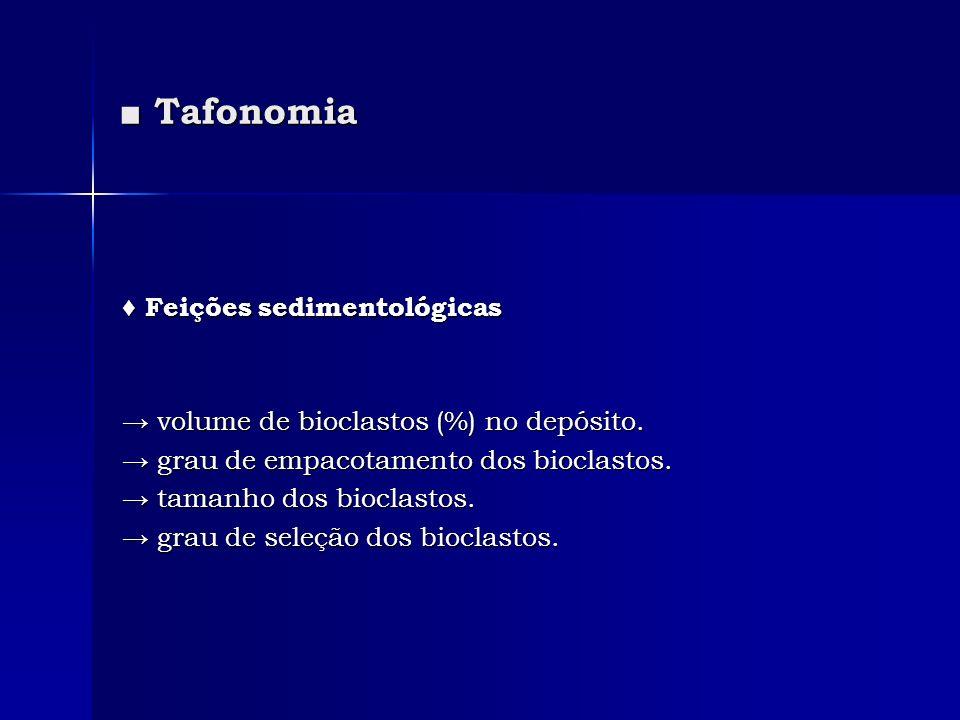 ■ Tafonomia ♦ Feições sedimentológicas