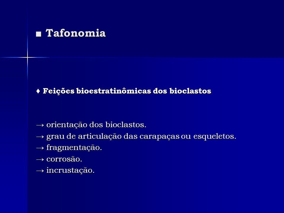 ■ Tafonomia ♦ Feições bioestratinômicas dos bioclastos