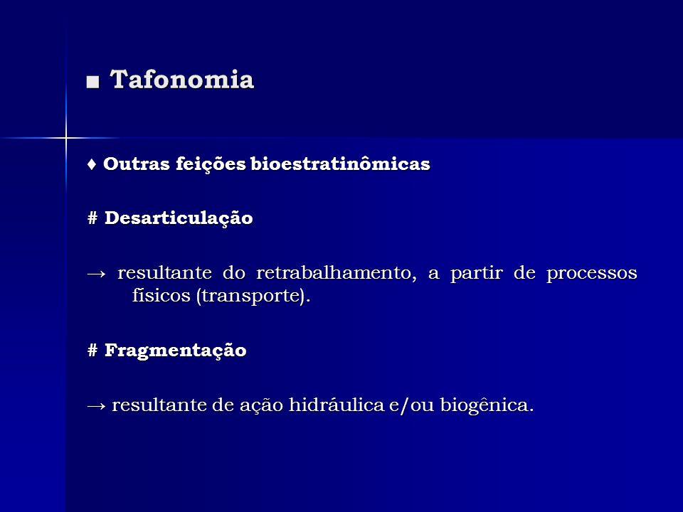 ■ Tafonomia ♦ Outras feições bioestratinômicas # Desarticulação