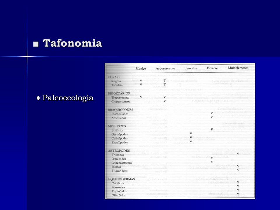 ■ Tafonomia ♦ Paleoecologia