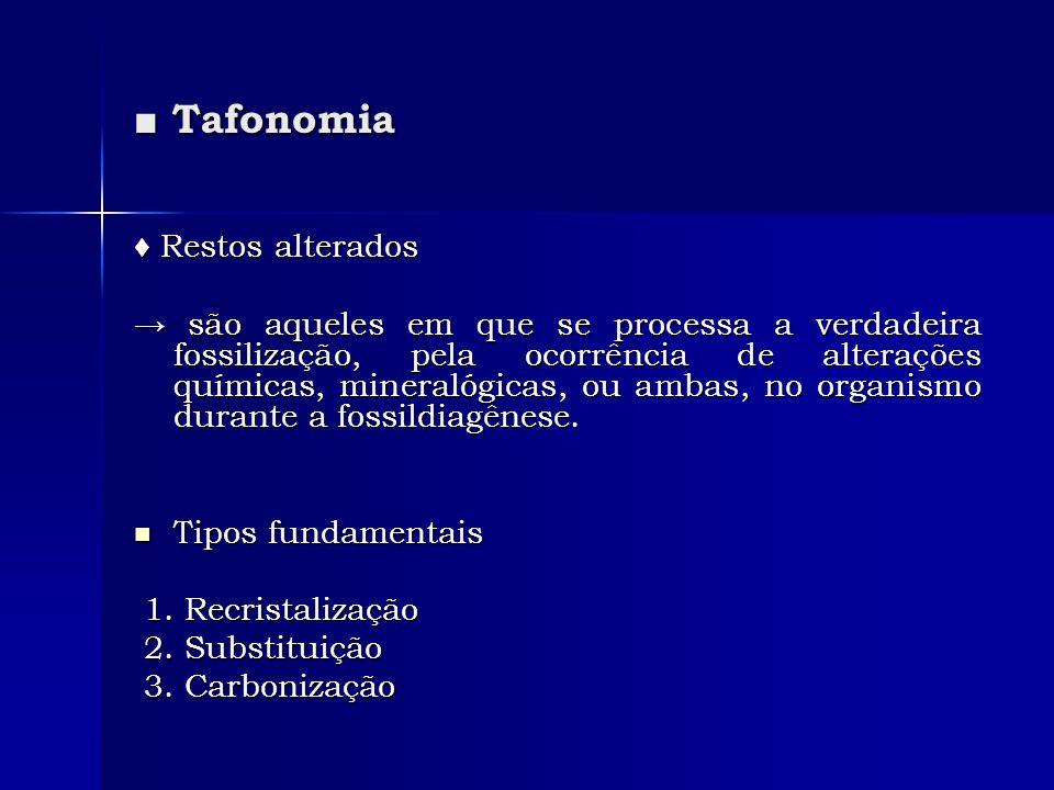 ■ Tafonomia ♦ Restos alterados