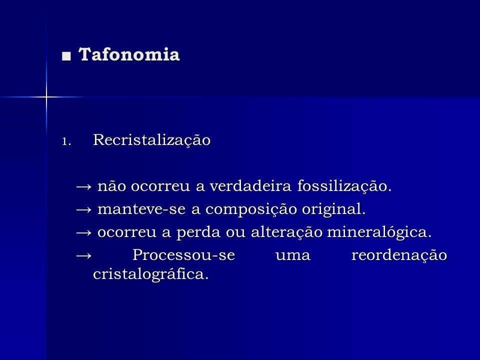 ■ Tafonomia Recristalização → não ocorreu a verdadeira fossilização.