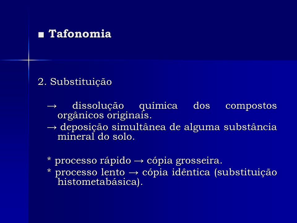 ■ Tafonomia 2. Substituição