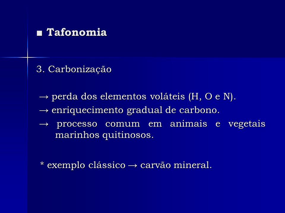 * exemplo clássico → carvão mineral.