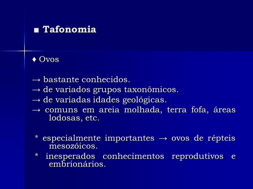 ■ Tafonomia ♦ Ovos → bastante conhecidos.