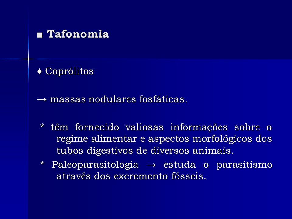 ■ Tafonomia ♦ Coprólitos → massas nodulares fosfáticas.