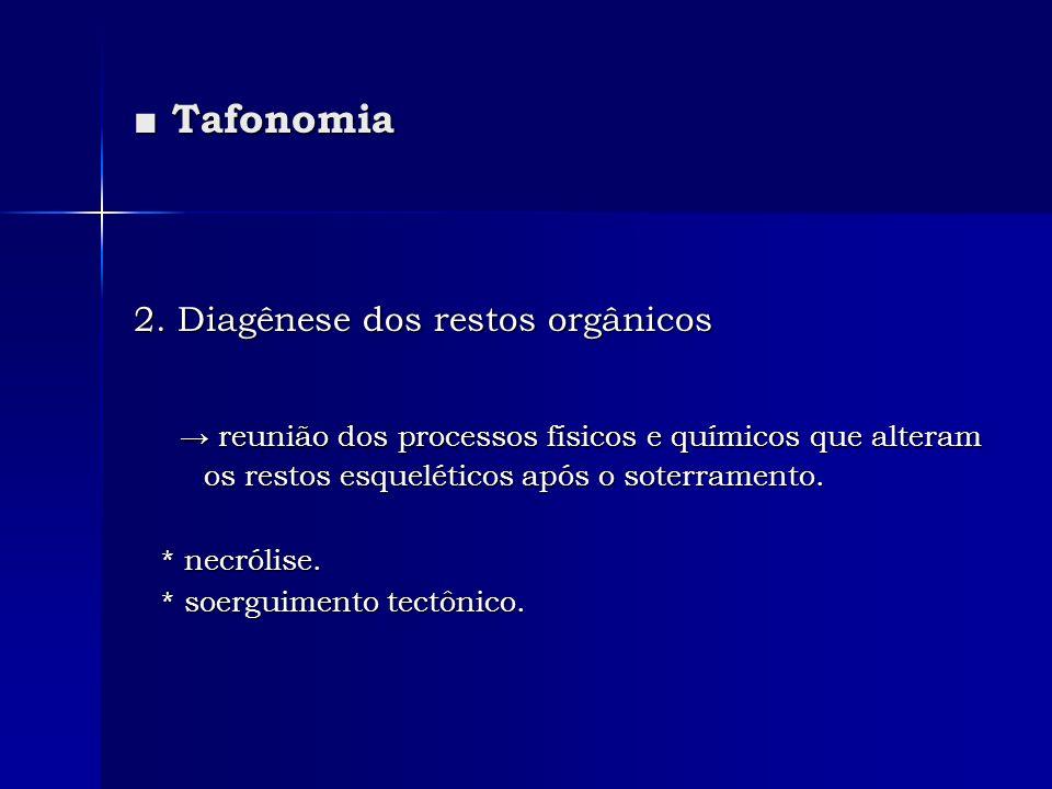 ■ Tafonomia 2. Diagênese dos restos orgânicos. → reunião dos processos físicos e químicos que alteram os restos esqueléticos após o soterramento.
