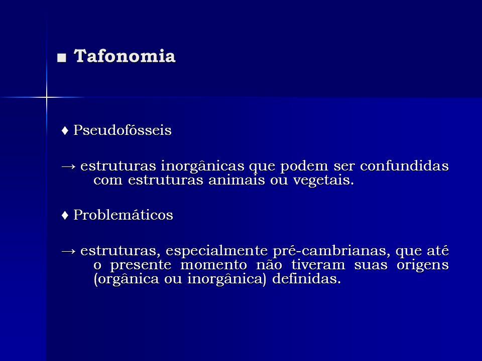 ■ Tafonomia ♦ Pseudofósseis