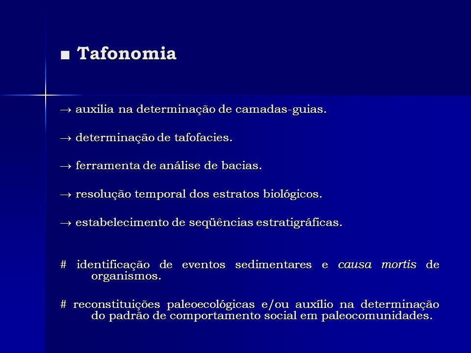■ Tafonomia → auxilia na determinação de camadas-guias.