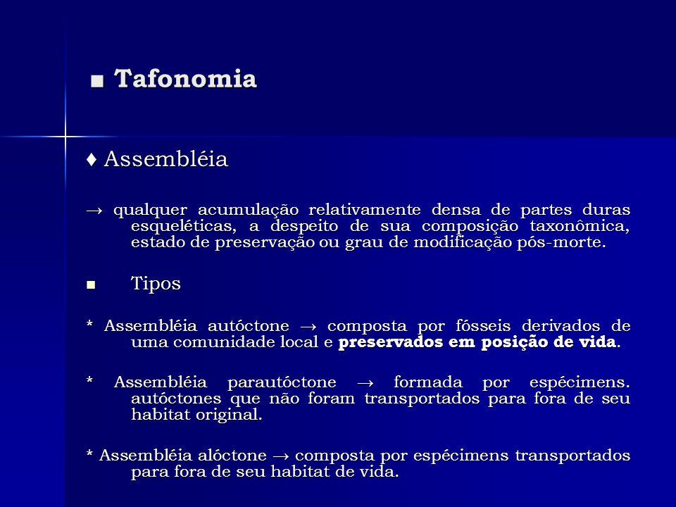 ■ Tafonomia ♦ Assembléia Tipos
