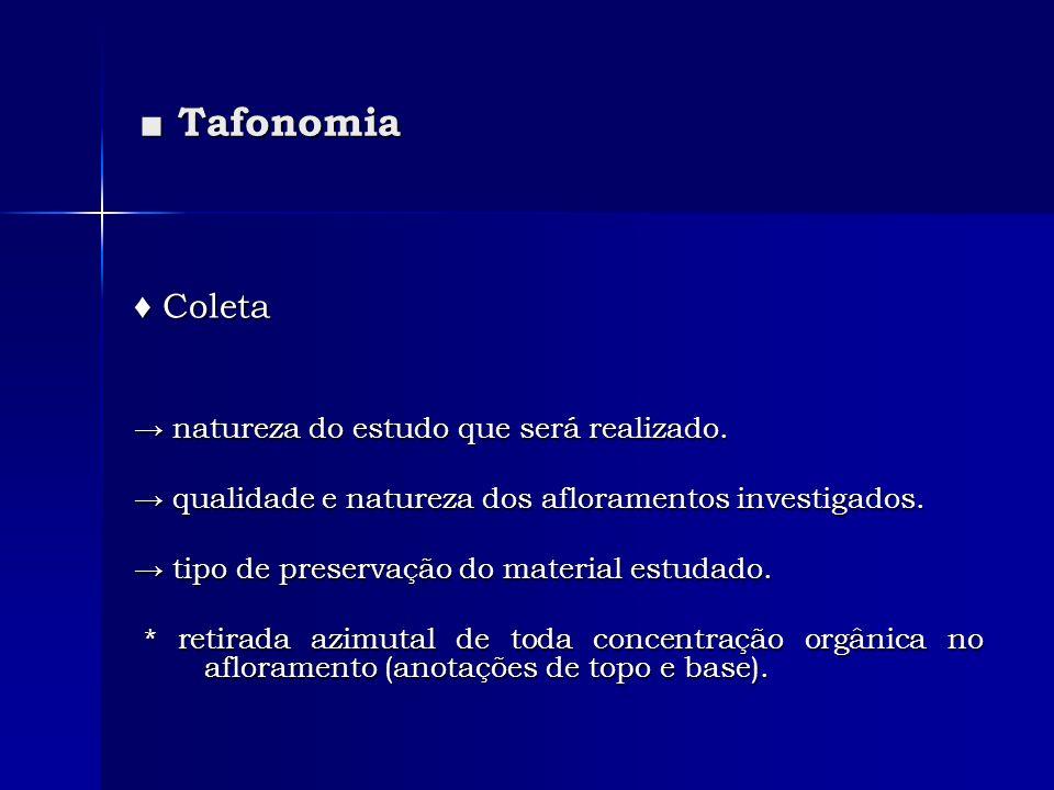 ■ Tafonomia ♦ Coleta → natureza do estudo que será realizado.
