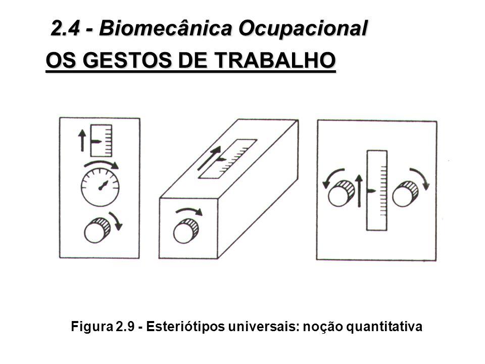 Figura 2.9 - Esteriótipos universais: noção quantitativa