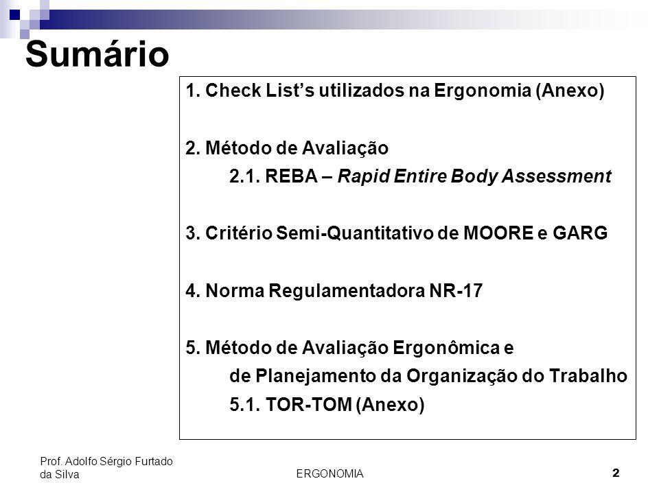 Sumário 1. Check List's utilizados na Ergonomia (Anexo)