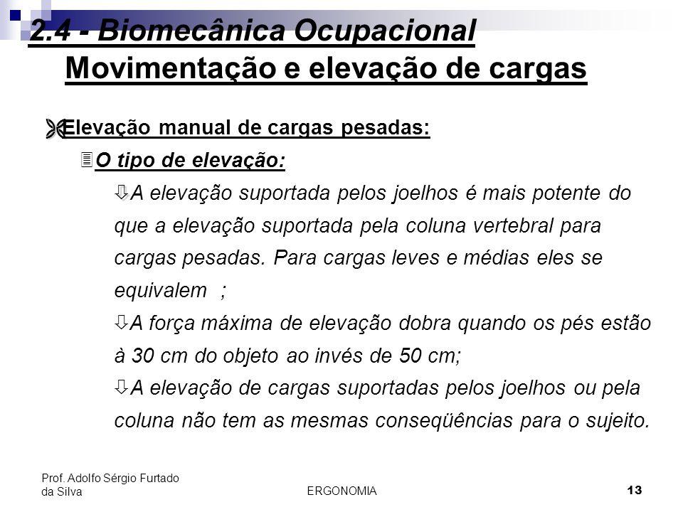 2.4 - Biomecânica Ocupacional Movimentação e elevação de cargas