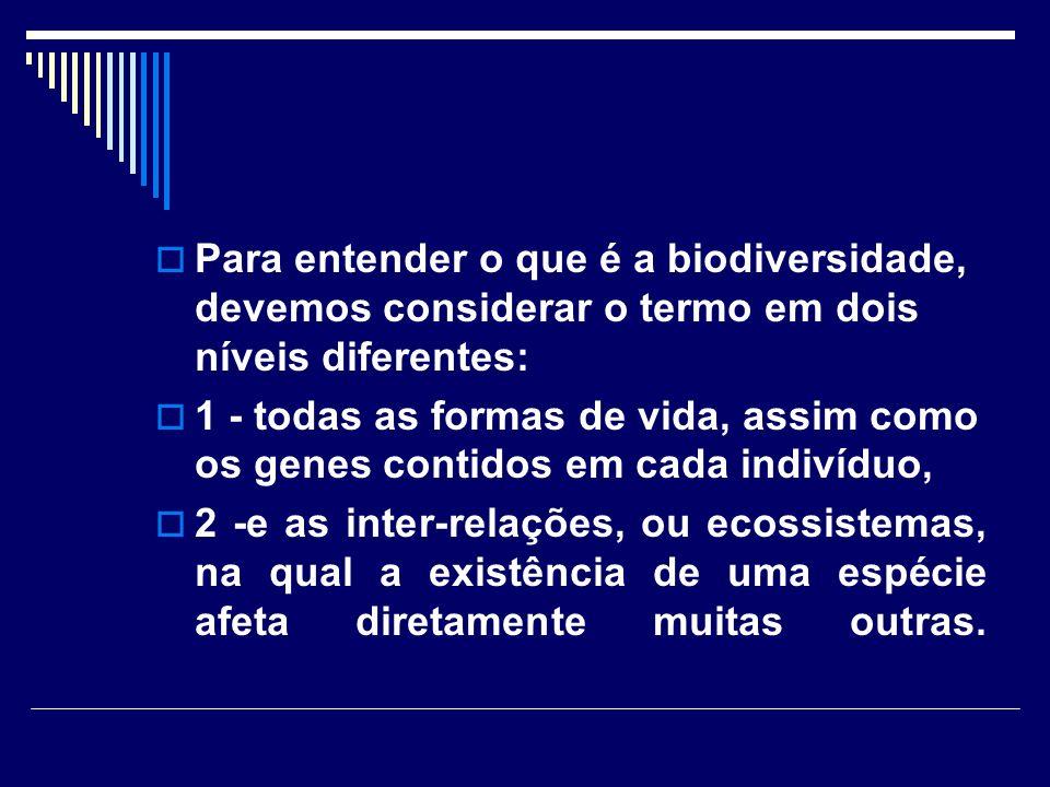 Para entender o que é a biodiversidade, devemos considerar o termo em dois níveis diferentes: