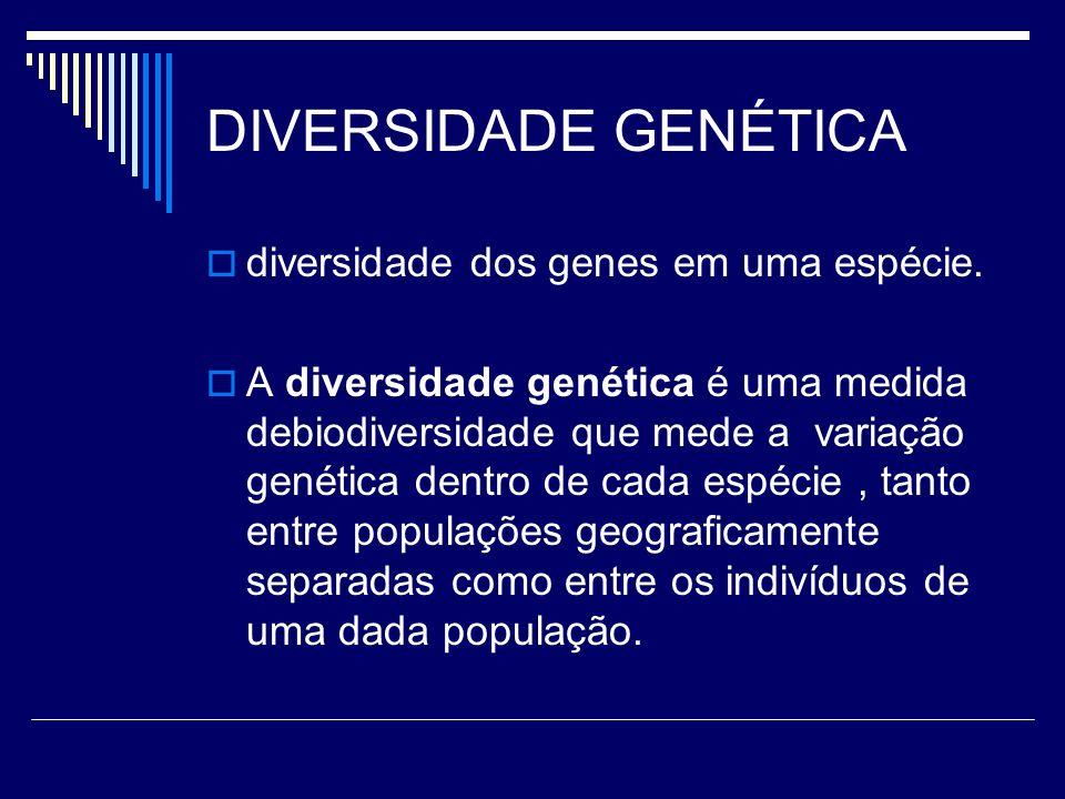 DIVERSIDADE GENÉTICA diversidade dos genes em uma espécie.