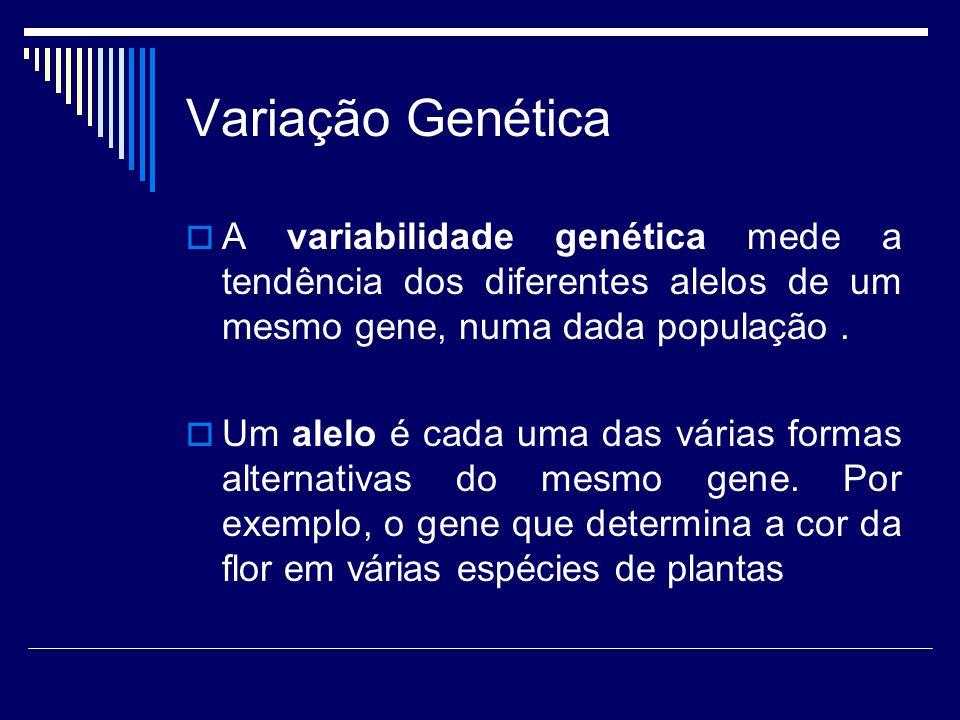 Variação Genética A variabilidade genética mede a tendência dos diferentes alelos de um mesmo gene, numa dada população .