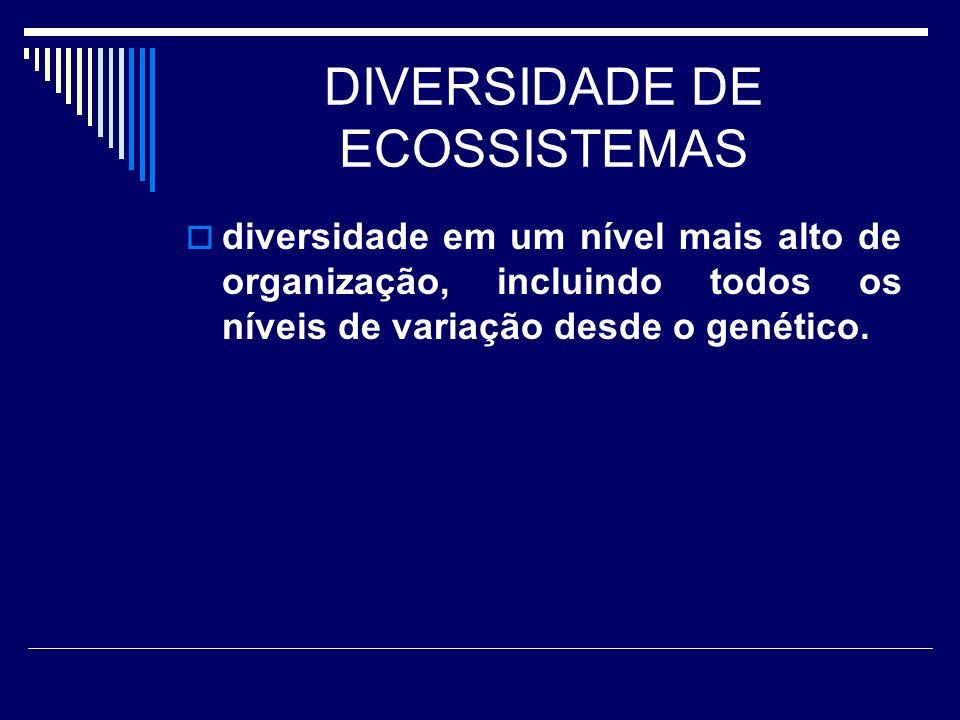 DIVERSIDADE DE ECOSSISTEMAS