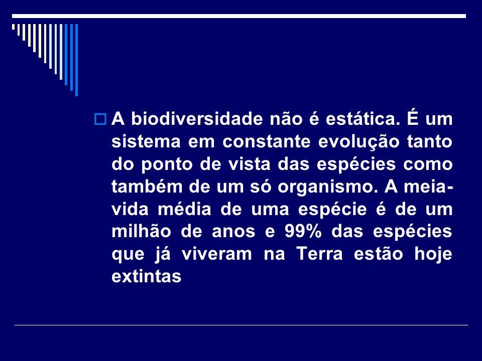 A biodiversidade não é estática