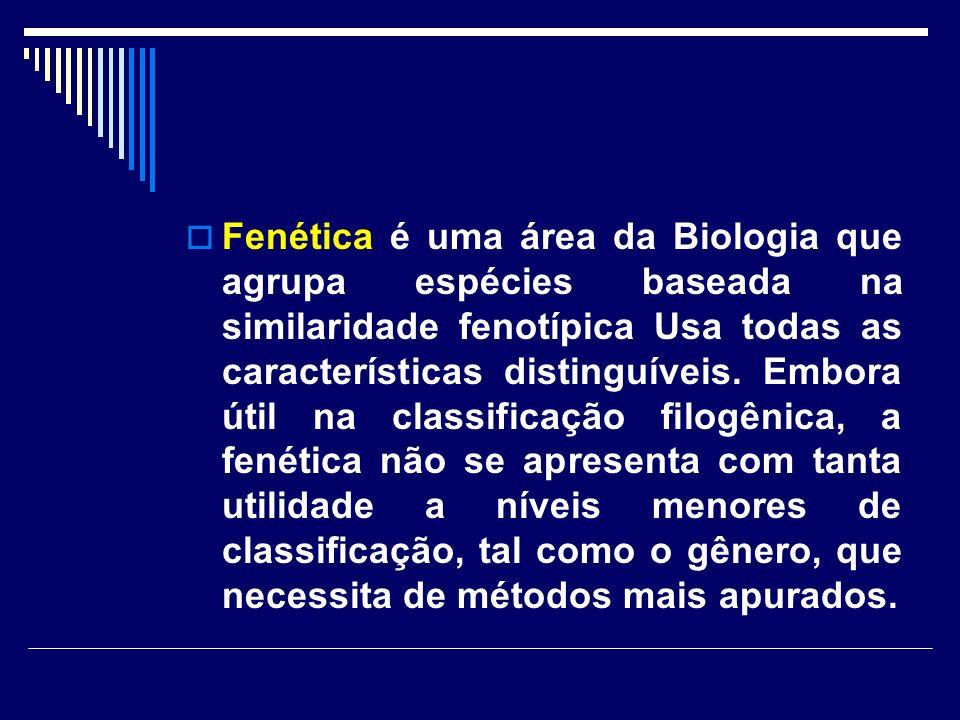 Fenética é uma área da Biologia que agrupa espécies baseada na similaridade fenotípica Usa todas as características distinguíveis.