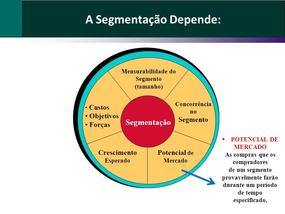 A Segmentação Depende: