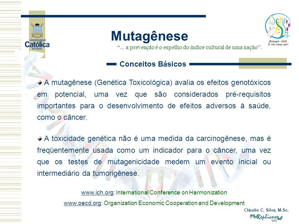 Mutagênese Conceitos Básicos