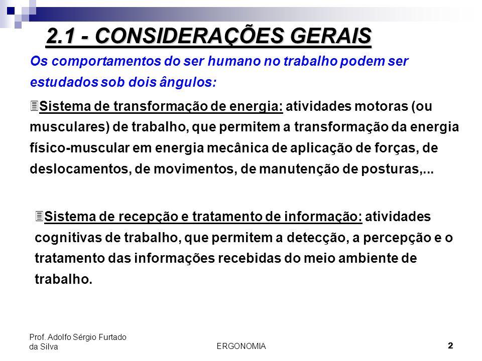 2.1 - CONSIDERAÇÕES GERAIS