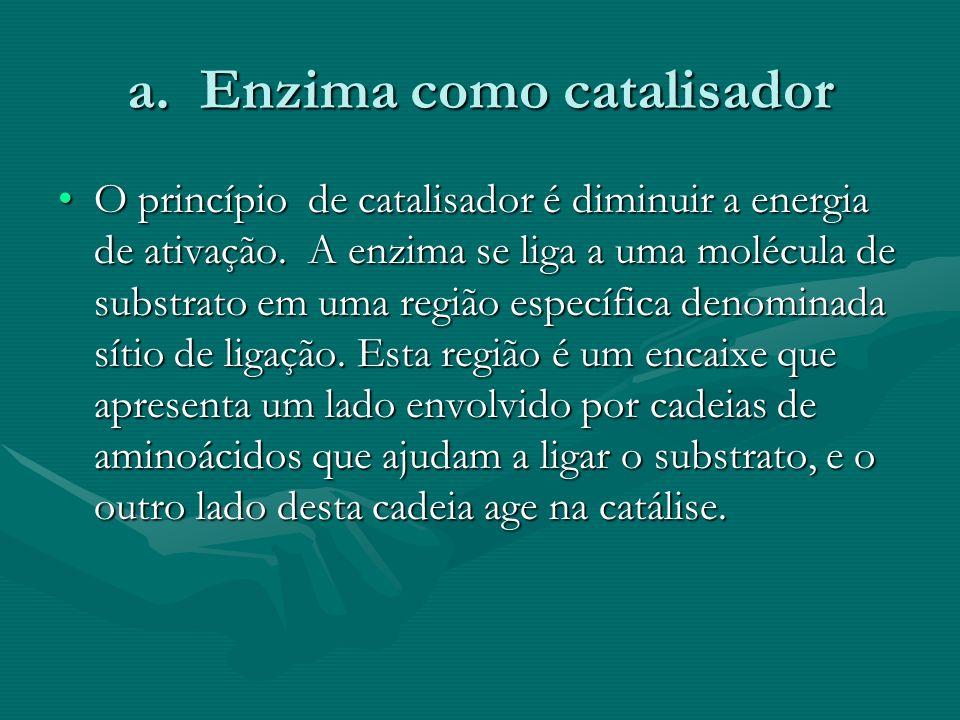 a. Enzima como catalisador