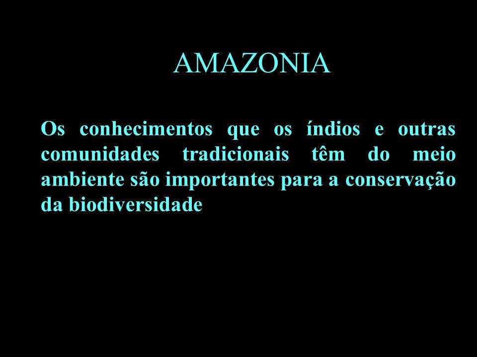 B AMAZONIA Os conhecimentos que os índios e outras comunidades tradicionais têm do meio ambiente são importantes para a conservação da biodiversidade.