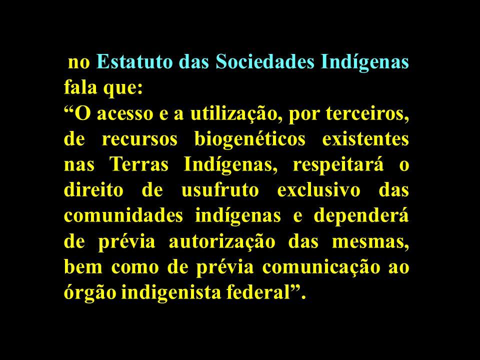no Estatuto das Sociedades Indígenas fala que: