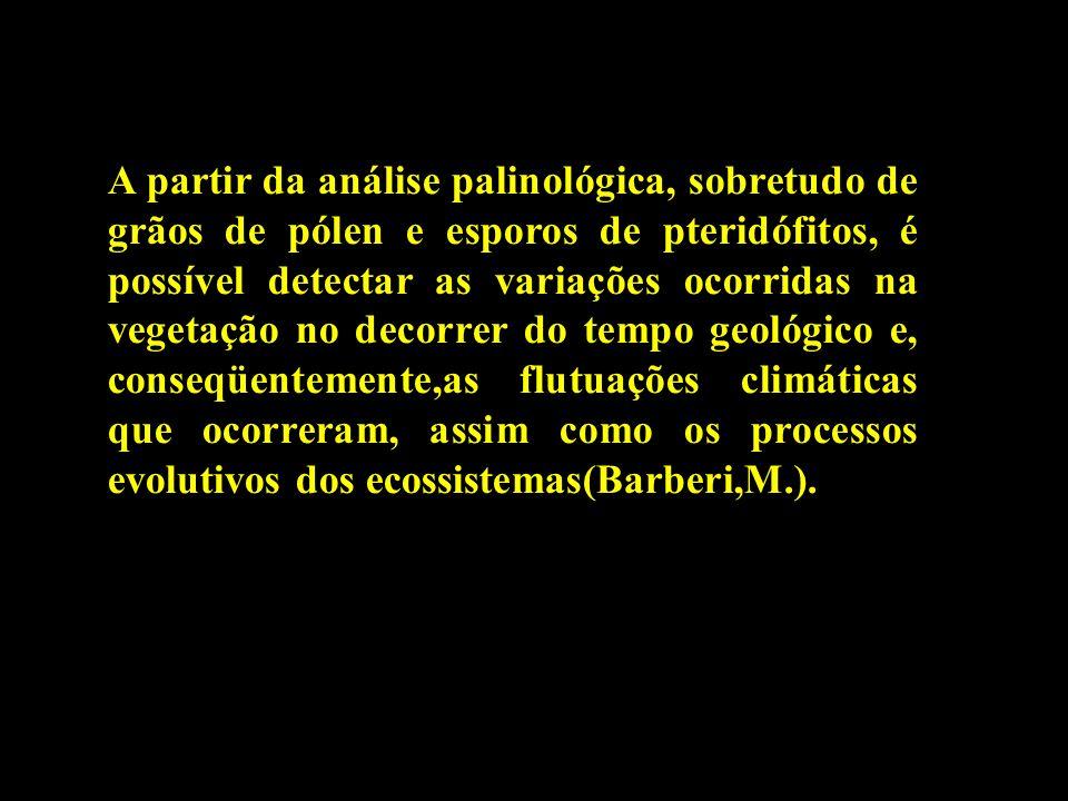 A partir da análise palinológica, sobretudo de grãos de pólen e esporos de pteridófitos, é possível detectar as variações ocorridas na vegetação no decorrer do tempo geológico e, conseqüentemente,as flutuações climáticas que ocorreram, assim como os processos evolutivos dos ecossistemas(Barberi,M.).
